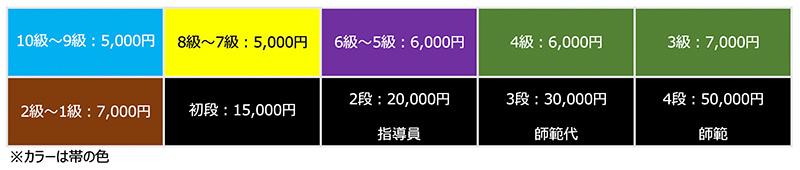 昇級審査費用、帯の色